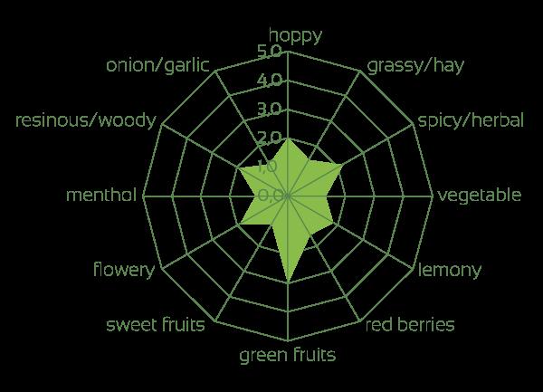 Hallertau Blanc impressions of the raw hops