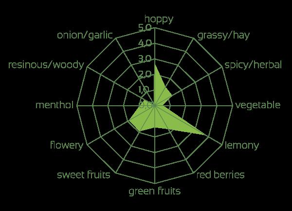 Mandarina Bavaria impressions of the raw hops