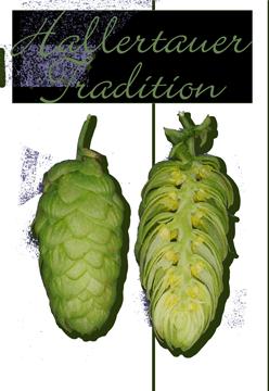 Hallertauer Tradition